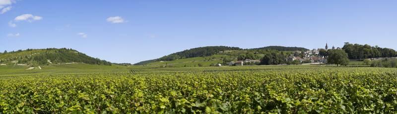 El Pays Beaunois: paisajes excepcionales ©OTI-I&A