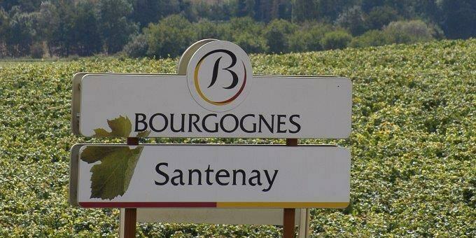 Denominación Santenay