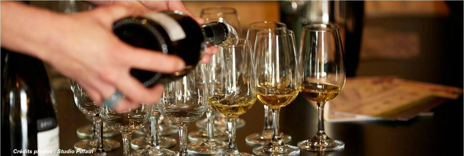 Degustación Vinos de Borgona en Beaune, Meursault, Santenay, Chagny, Savigny-les-Beaune, Nolay