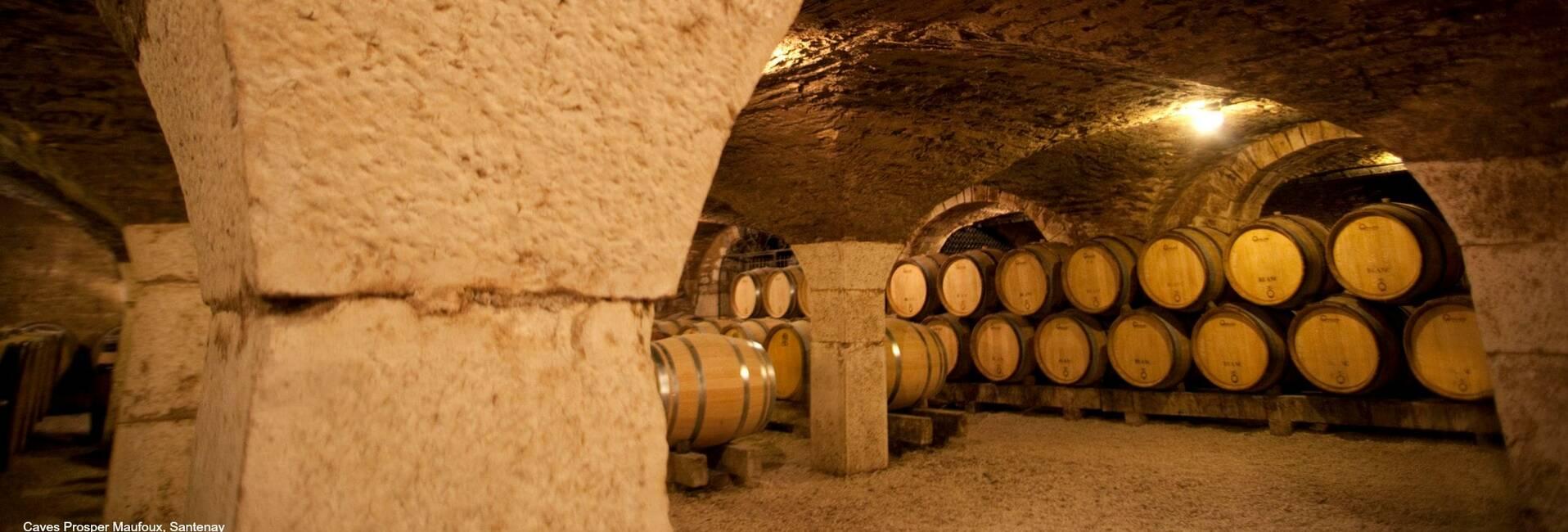 Visitas a bodegas en Beaune, Meursault, Santenay, Chagny, Nolay, Savigny-les-Beaune