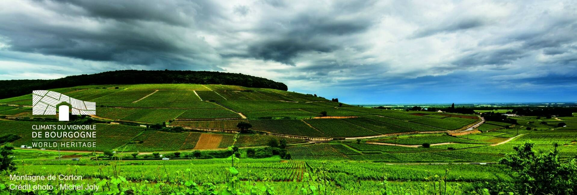 Montagne de Corton en Borgoña, Francia