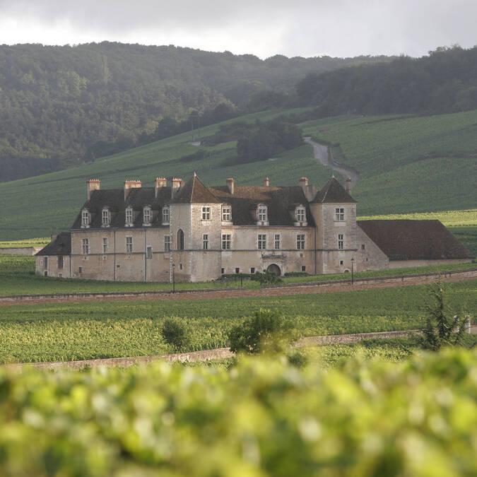 Castillo del Clos de Vougeot