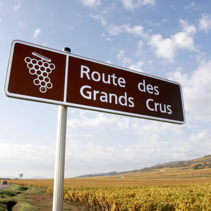 Route des Vins de Bourgogne - Route des Grands Crus