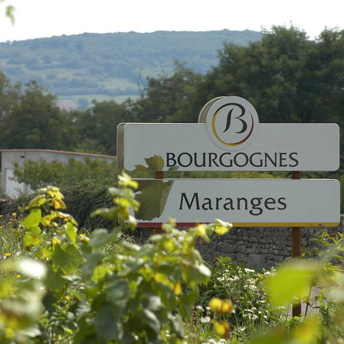 Maranges, vía de las Viñas